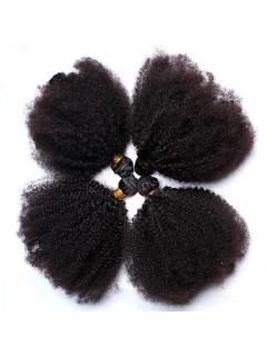 Afro Verworren Curly Jungfrau-Menschenhaar-Webart Natural Black